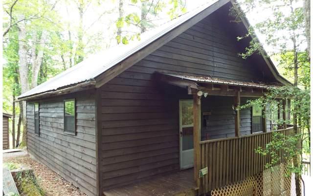 639 Jacks River, Epworth, GA 30541 (MLS #297492) :: RE/MAX Town & Country