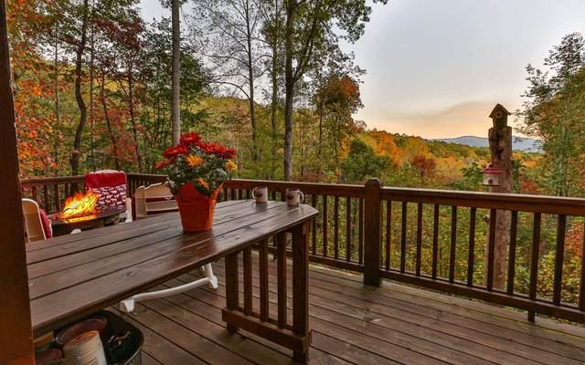 860 Cohutta Mountain Rd., Cherry Log, GA 30522 (MLS #297494) :: RE/MAX Town & Country