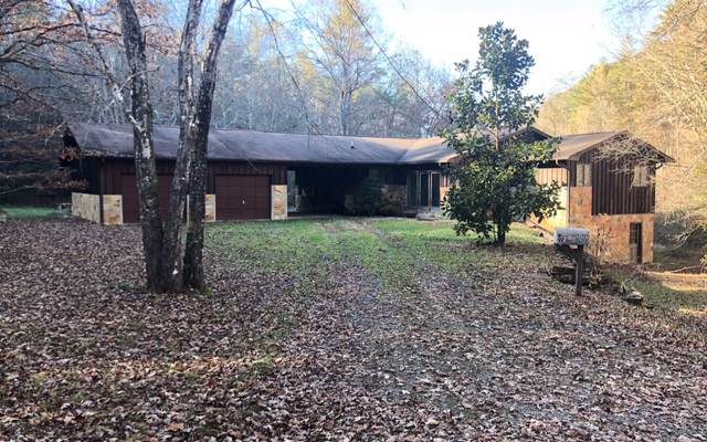 92 Stites Lane, Mineral Bluff, GA 30559 (MLS #297503) :: RE/MAX Town & Country