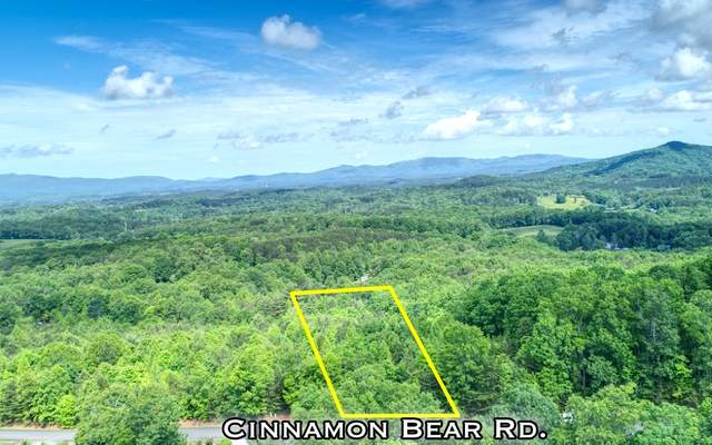 LOT51 Bear Mtn Ridge, Mineral Bluff, GA 30559 (MLS #297515) :: RE/MAX Town & Country