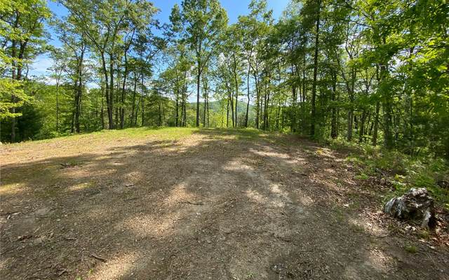 2 Park At Raven Ridge, Mineral Bluff, GA 30559 (MLS #297520) :: RE/MAX Town & Country