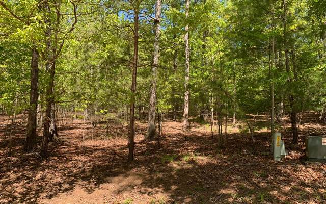 74/75 Eagle Bend, Blairsville, GA 30512 (MLS #297532) :: RE/MAX Town & Country
