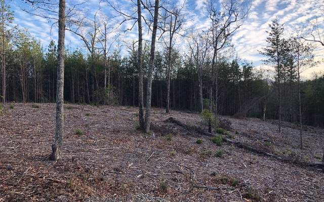 LOT51 Double Springs, Blairsville, GA 30512 (MLS #297536) :: RE/MAX Town & Country