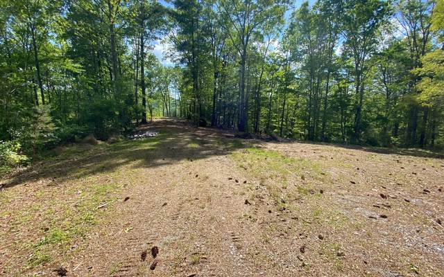 11 Park At Raven Ridge, Mineral Bluff, GA 30559 (MLS #297545) :: RE/MAX Town & Country