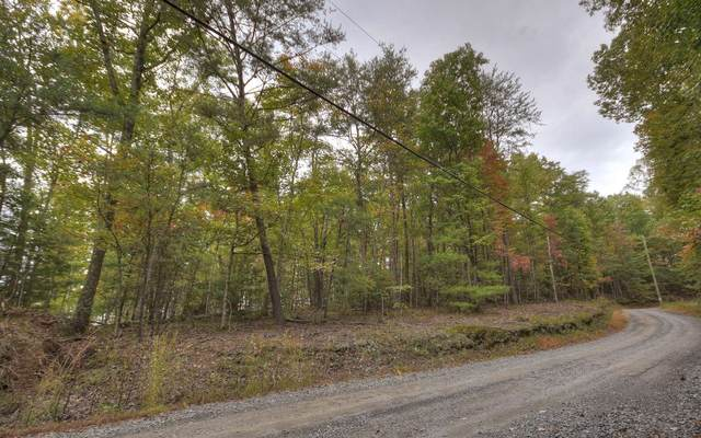 0 Laurel Ridge Way, Cherry Log, GA 30520 (MLS #297592) :: RE/MAX Town & Country