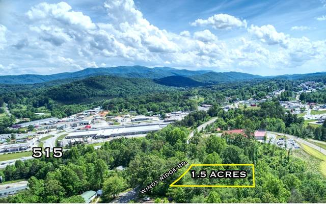 856 Windy Ridge Rd, Blue Ridge, GA 30513 (MLS #297605) :: RE/MAX Town & Country
