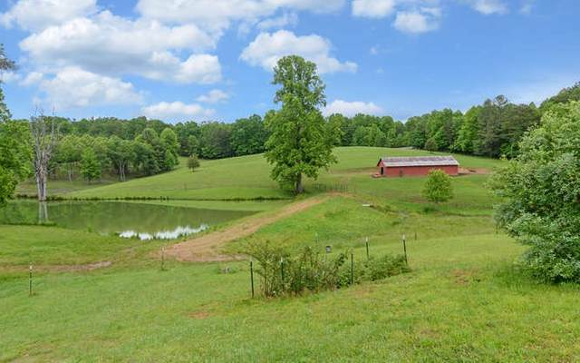 2040 Old Mobile Road, Mc Caysville, GA 30555 (MLS #297608) :: RE/MAX Town & Country