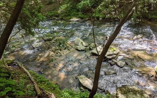 68 Mountain Creek Hollo, Ellijay, GA 30175 (MLS #297617) :: RE/MAX Town & Country