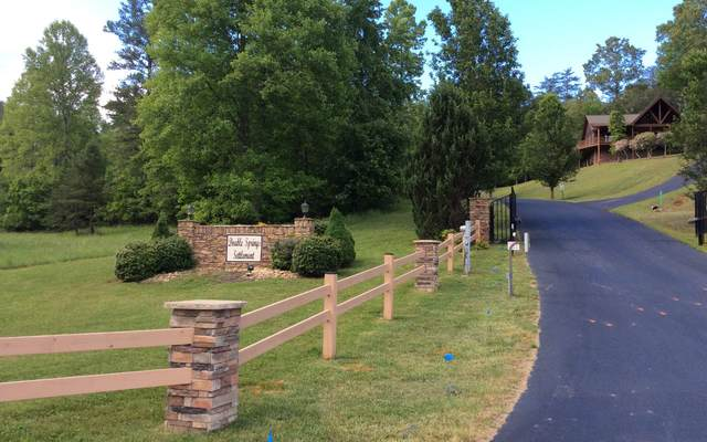 LOT50 Double Springs, Blairsville, GA 30512 (MLS #297630) :: Path & Post Real Estate