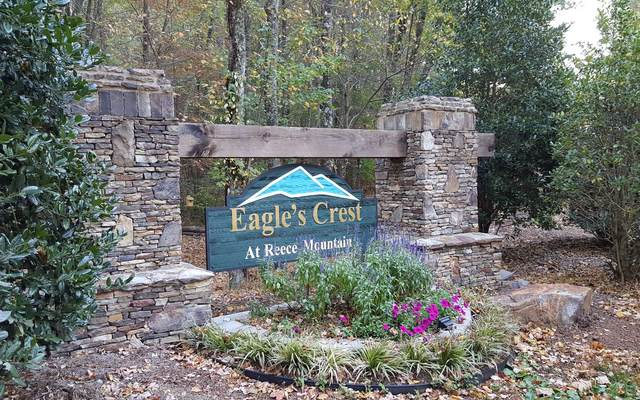 LT 39 Reece Mountain Rd, Ellijay, GA 30540 (MLS #297639) :: RE/MAX Town & Country