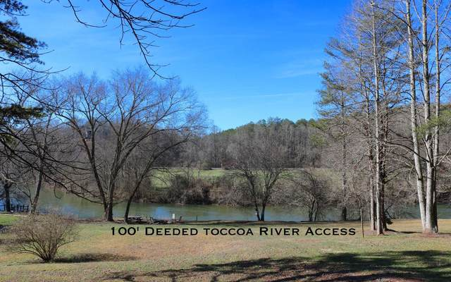 LT 46 Fishtrap Trail, Mineral Bluff, GA 30559 (MLS #297642) :: RE/MAX Town & Country