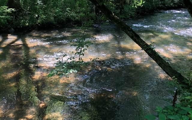 Creekstone Ln, Hiawassee, GA 30546 (MLS #297746) :: RE/MAX Town & Country