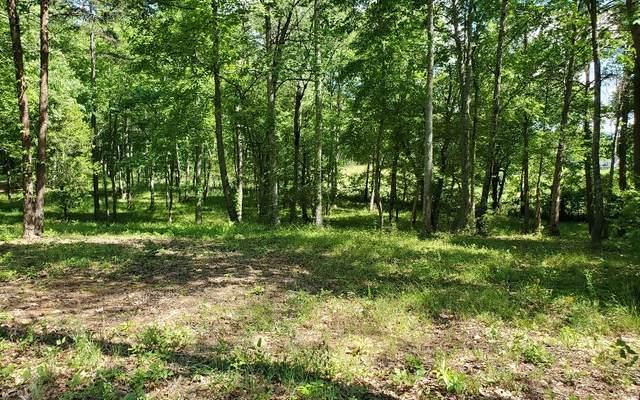 7 Tallulah Landing, Blairsville, GA 30512 (MLS #297836) :: RE/MAX Town & Country