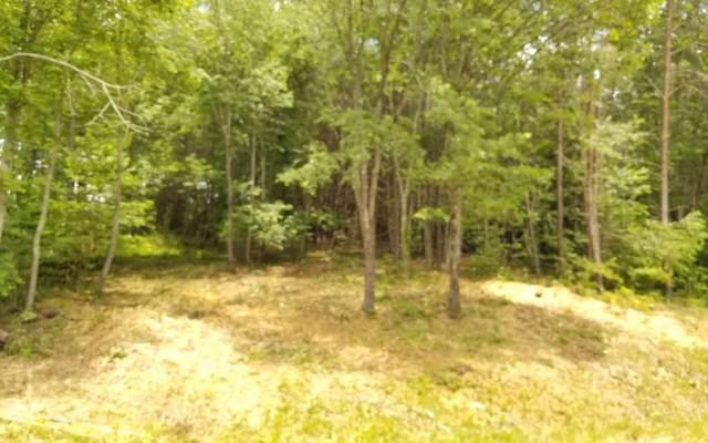 LT169 Owen Glen Ln, Blairsville, GA 30512 (MLS #297861) :: Path & Post Real Estate