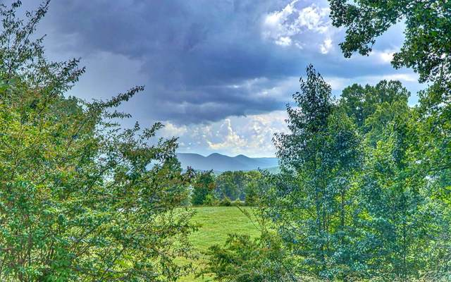 LT 43 The Arbor, Blairsville, GA 30512 (MLS #297864) :: RE/MAX Town & Country