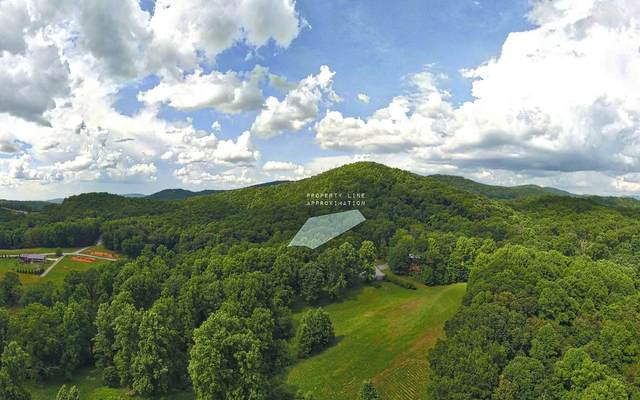 LT 45 The Arbor, Blairsville, GA 30512 (MLS #297866) :: RE/MAX Town & Country