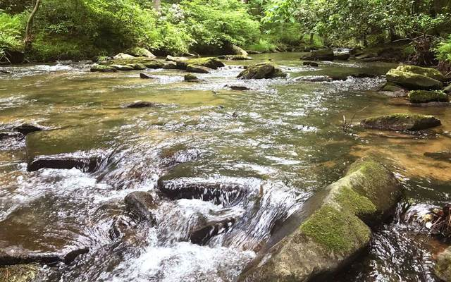1.27A Mountain Creek Hollo, Talking Rock, GA 30175 (MLS #297938) :: Path & Post Real Estate