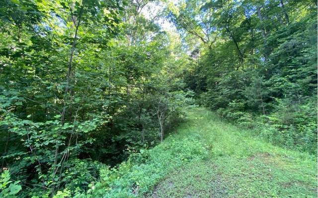 Sam's Branch View, Marble, NC 28905 (MLS #298087) :: Path & Post Real Estate