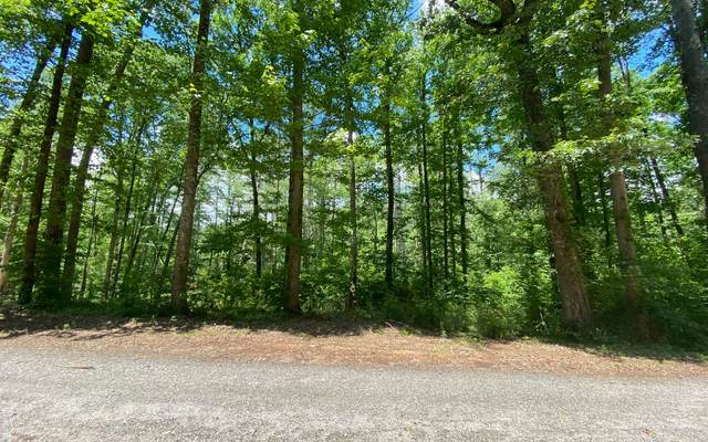 #46 Lost River Trail, Hayesville, NC 28904 (MLS #298095) :: Path & Post Real Estate