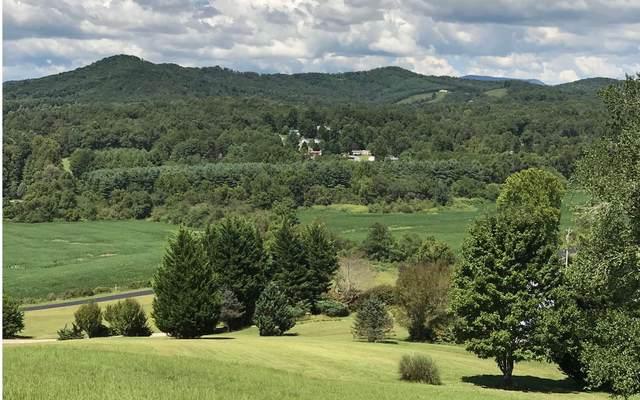 LT 13 Warne Estates, Warne, NC 28904 (MLS #298100) :: RE/MAX Town & Country