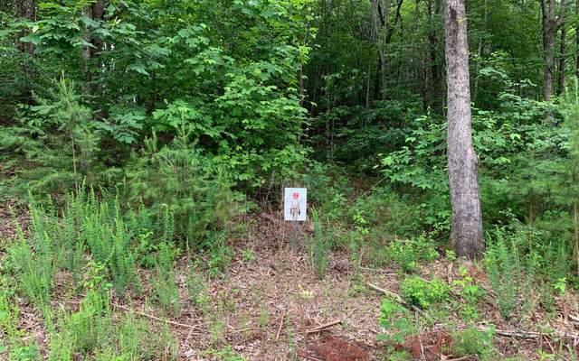 LT174 Owen Glen, Blairsville, GA 30512 (MLS #298250) :: Path & Post Real Estate