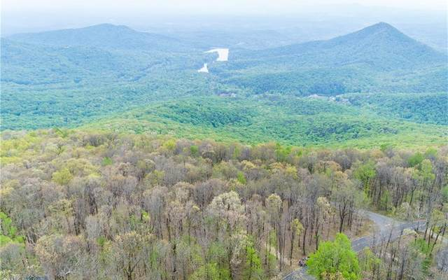 87 Sunset Cliff Dr, Jasper, GA 30143 (MLS #298263) :: RE/MAX Town & Country