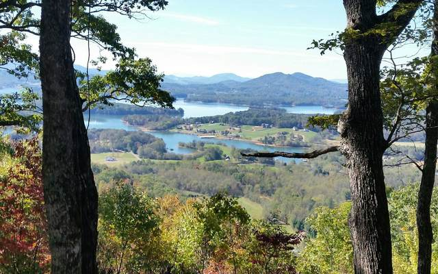 96 Eagles View Hollow, Hayesville, NC 28904 (MLS #298297) :: Path & Post Real Estate