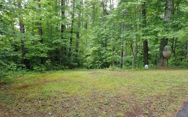 1 Chestnut Oaks, Murphy, NC 28906 (MLS #298361) :: Path & Post Real Estate