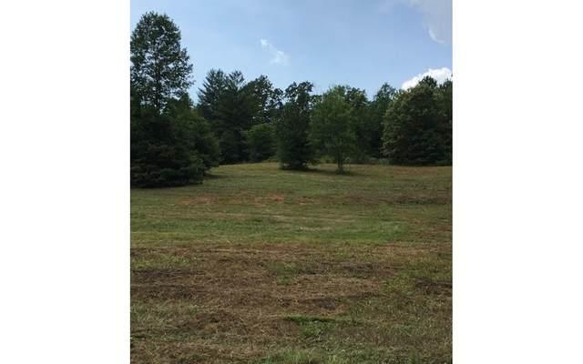 Lts 1, 2 & 4 Spur 60, Mineral Bluff, GA 30559 (MLS #298422) :: Path & Post Real Estate