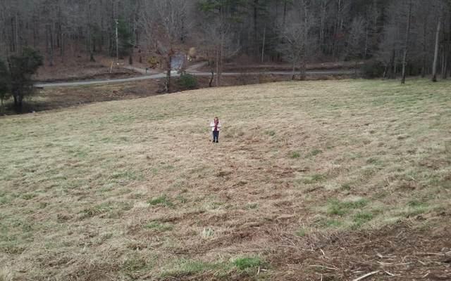 LOT 3 High Meadows, Morganton, GA 30560 (MLS #298534) :: Path & Post Real Estate