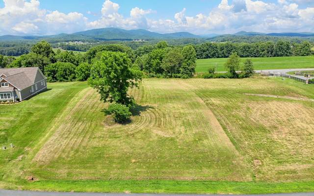 Hidden Harbor Lot 2, Blairsville, GA 30512 (MLS #298540) :: RE/MAX Town & Country