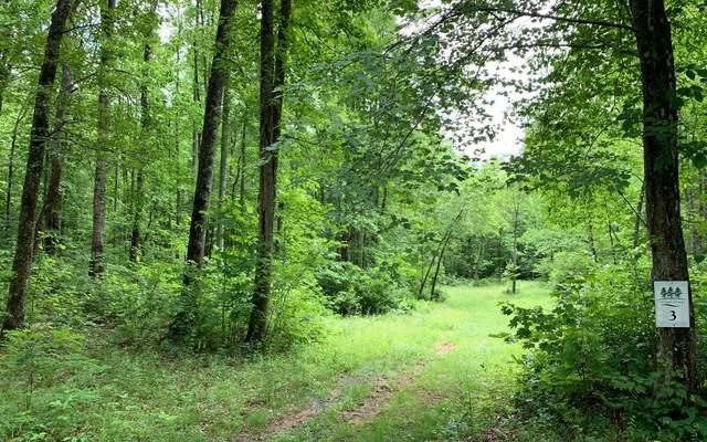 LOT 3 Whisper Woods, Hiawassee, GA 30546 (MLS #298634) :: RE/MAX Town & Country