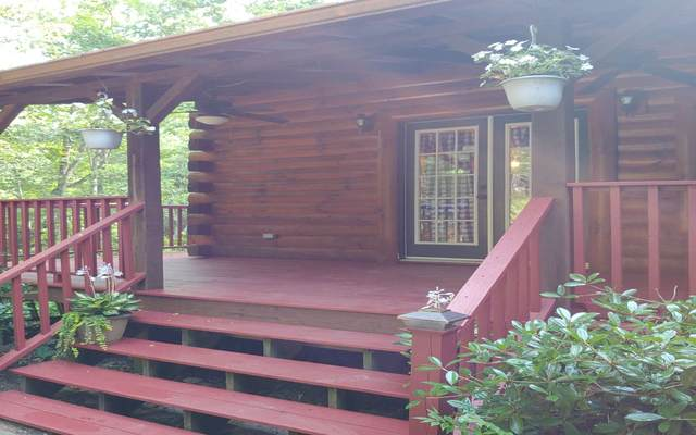 47 Abby Lane, Murphy, NC 28906 (MLS #298684) :: RE/MAX Town & Country