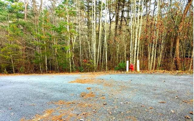 LT118 The Sanctuary, Blairsville, GA 30512 (MLS #298737) :: Path & Post Real Estate
