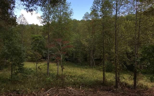 LOT4 Hood Acres, Blairsville, GA 30512 (MLS #298803) :: RE/MAX Town & Country