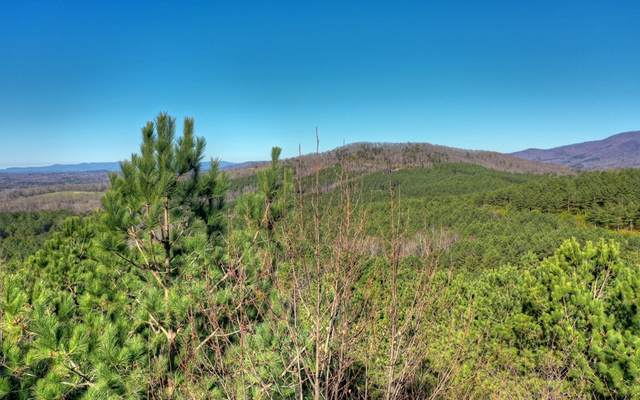 LT 27 Reece Mountain, Ellijay, GA 30540 (MLS #298891) :: Path & Post Real Estate
