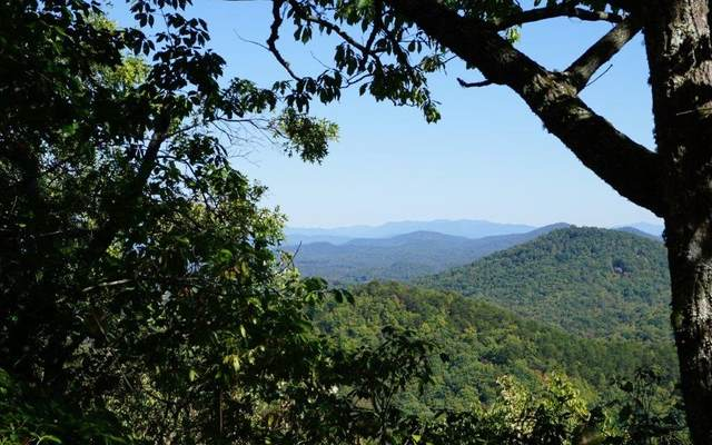 137 Campbell Cove Creek, Turtletown, TN 37391 (MLS #298981) :: RE/MAX Town & Country