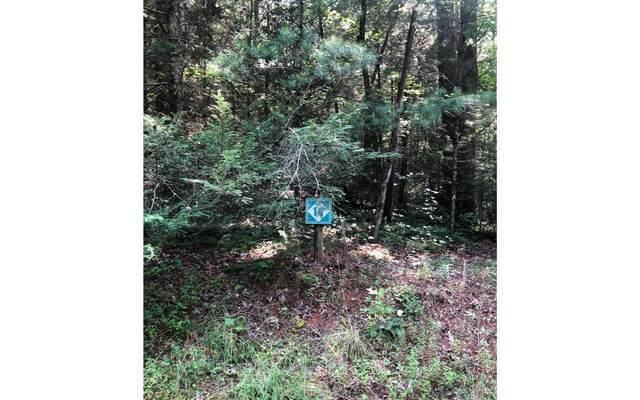 14 Maple Rest Lane, Ellijay, GA 30536 (MLS #298990) :: Path & Post Real Estate