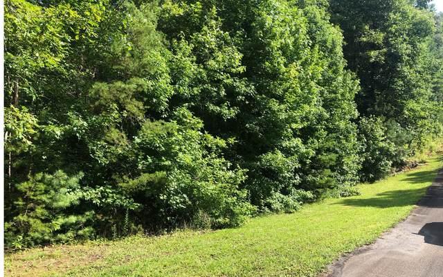 40 Maple Rest Trail, Ellijay, GA 30540 (MLS #298993) :: Path & Post Real Estate