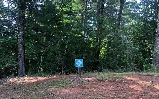 30 Parks Mountain Road, Ellijay, GA 30540 (MLS #298994) :: Path & Post Real Estate
