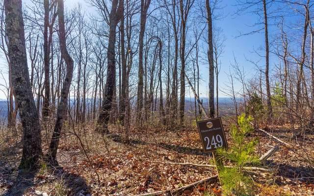 L.249 Andes Ridge, Ellijay, GA 30540 (MLS #299024) :: RE/MAX Town & Country