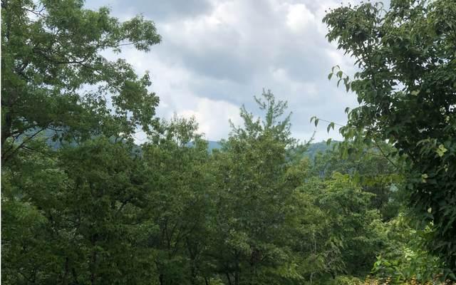 Antler Pass, Blairsville, GA 30512 (MLS #299031) :: RE/MAX Town & Country