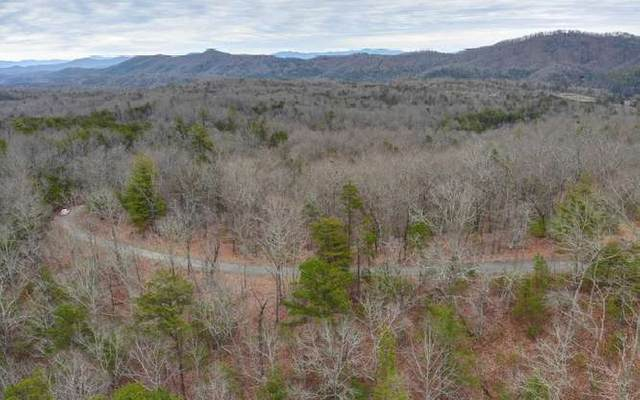 LOT 8 Crabapple Lane, Mineral Bluff, GA 30559 (MLS #299075) :: RE/MAX Town & Country