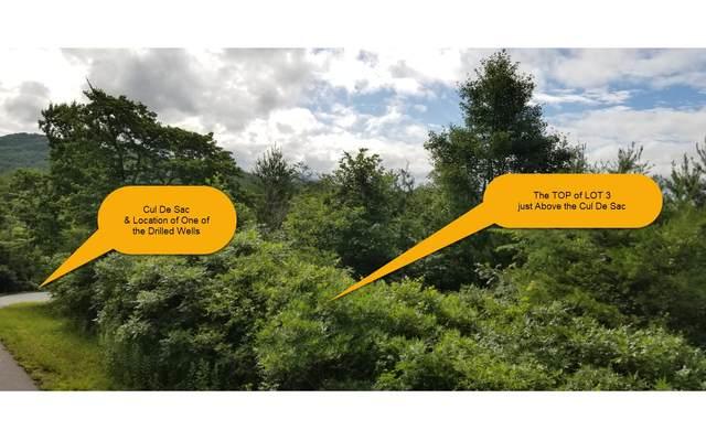 LOT 3 Brasstown Creek Ovrl, Brasstown, NC 28902 (MLS #299224) :: Path & Post Real Estate