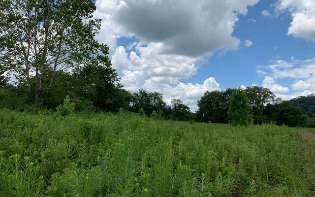 LT4A1 Rapid Creek Trail, Hayesville, NC 28904 (MLS #299277) :: Path & Post Real Estate
