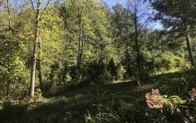 LOT 1 Pinehurst, Blairsville, GA 30512 (MLS #299304) :: Path & Post Real Estate