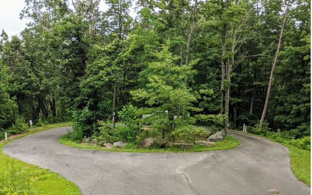 49 Winterberry Trace, Ellijay, GA 30540 (MLS #299314) :: RE/MAX Town & Country