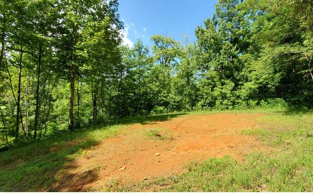 12 The Springs, Hayesville, NC 28904 (MLS #299328) :: Path & Post Real Estate