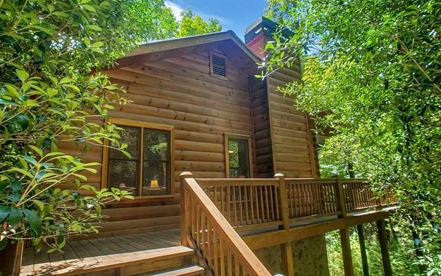 1165 Little Bushy Head Rd, Cherry Log, GA 30522 (MLS #299330) :: Path & Post Real Estate