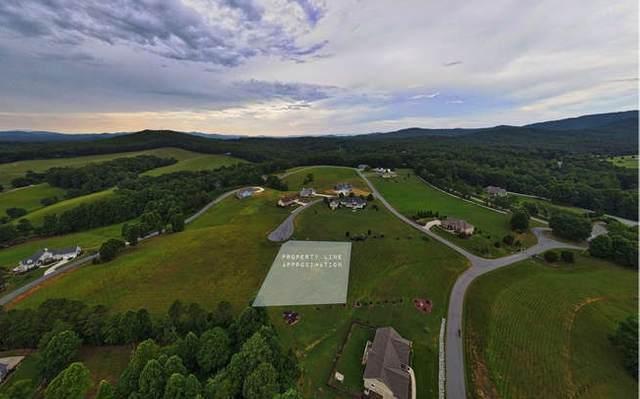 Lot 20 Owen Glen, Blairsville, GA 30512 (MLS #299340) :: Path & Post Real Estate